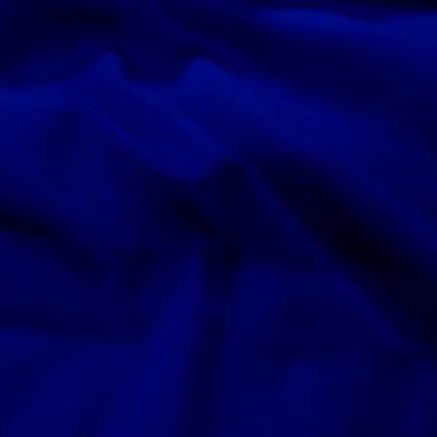 Bache bleu royal 1