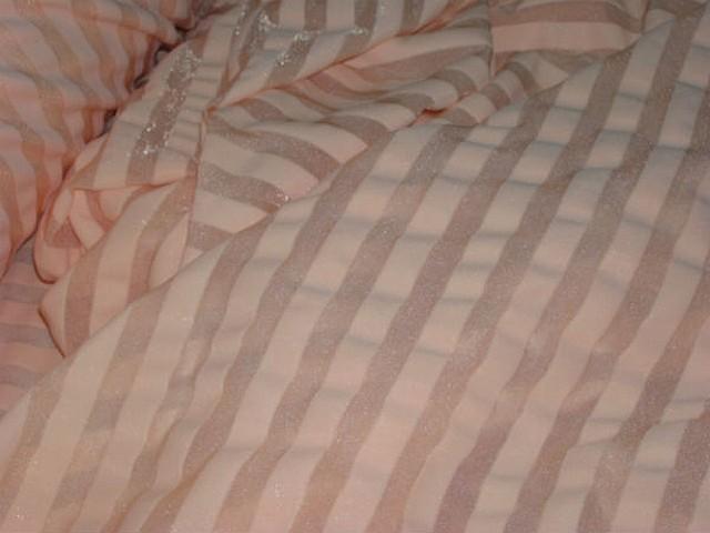 Lycra bisque rayures transparentes 4