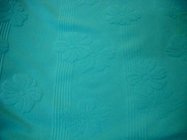 Lycra bleu celeste frappe rayures fleurs en relief 2
