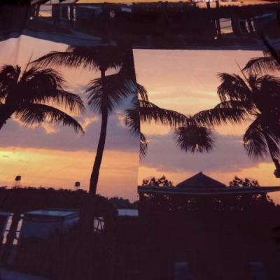 Satin viscose coucher de soleil palmiers 1