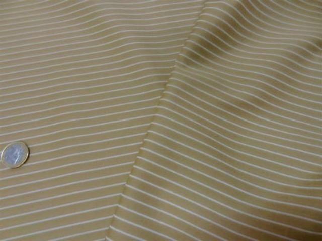 Coton beige rayures tennis blanche 1