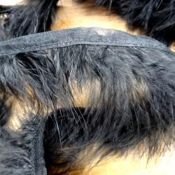 Galon Boa en plumes noires