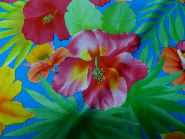 Lycra bleu hibiscus et dahlias 4