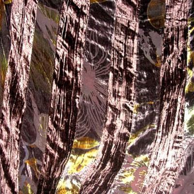 Mousseline devoree fleurie et bandes de velours chatoyant 1