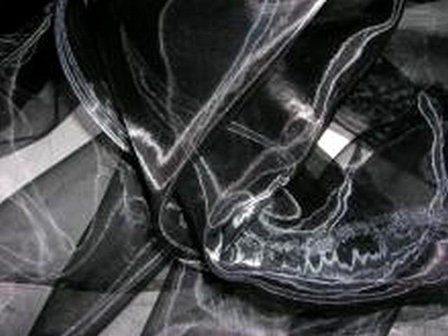 Organza noir 1