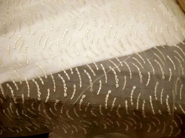 Resille lycra motif brode or pale 3