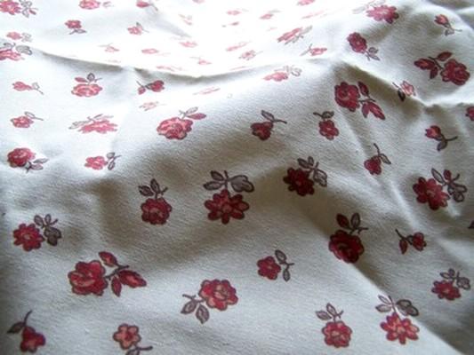 Toile coton provençal 1
