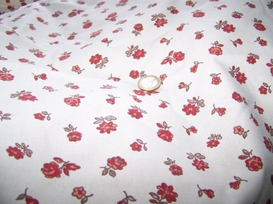 Toile coton provençal 4