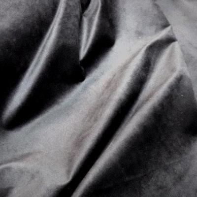 Velours gris ras 1