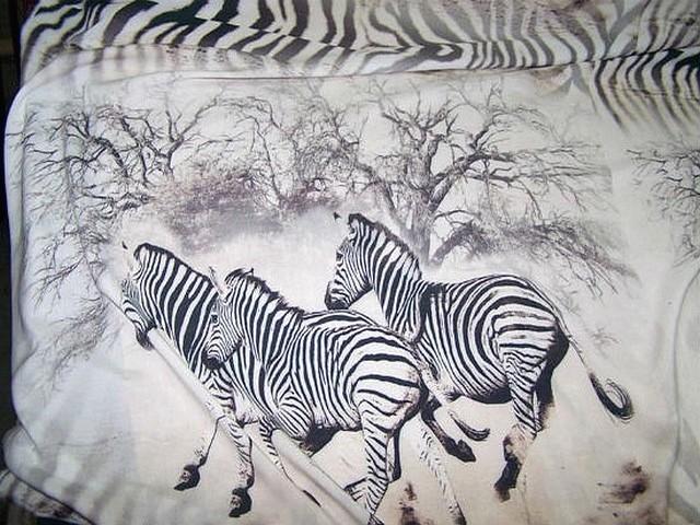 Viscose blanc casse zebres au galop 1