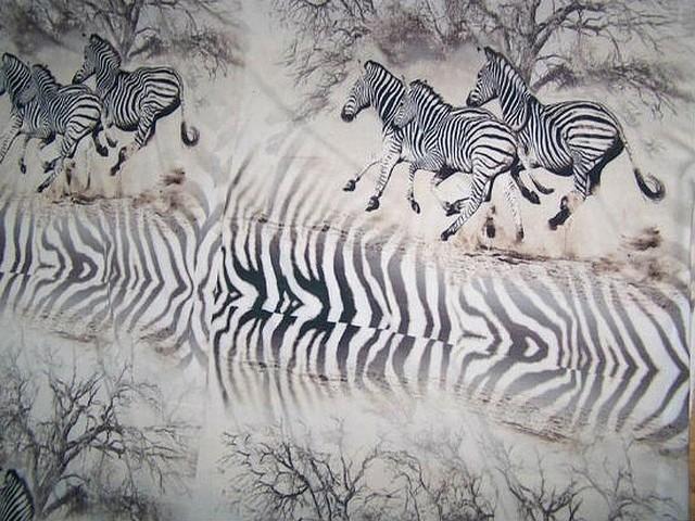 Viscose blanc casse zebres au galop 4
